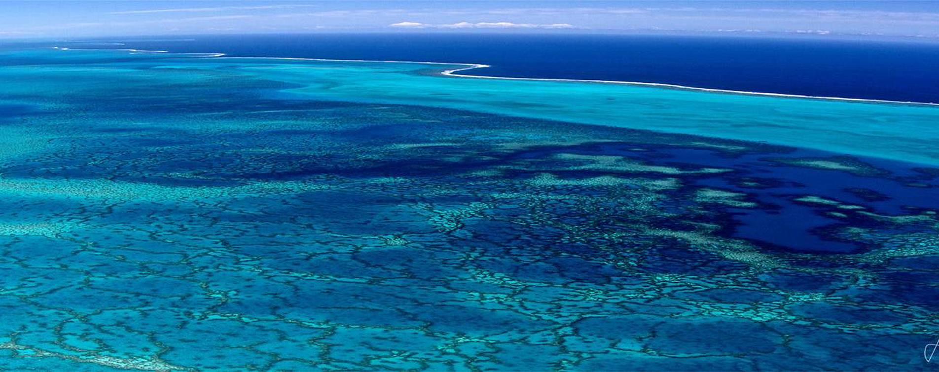 Sea Art Gallery New Caledonia